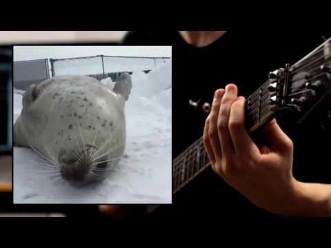 Seal metal!