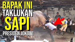 Video Viral, bukan sekedar detik detik, Bapak ini taklukkan Sapi Ngamuk milik Presiden Jokowi 2019 MP3, 3GP, MP4, WEBM, AVI, FLV Agustus 2019