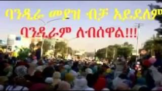 Today's protest demonstration at the Addis Ababa stadium on August 8, 2013  Slide Show)
