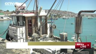 Saldanha South Africa  City pictures : Aquaculture Thrives at the Saldanha Bay in South Africa