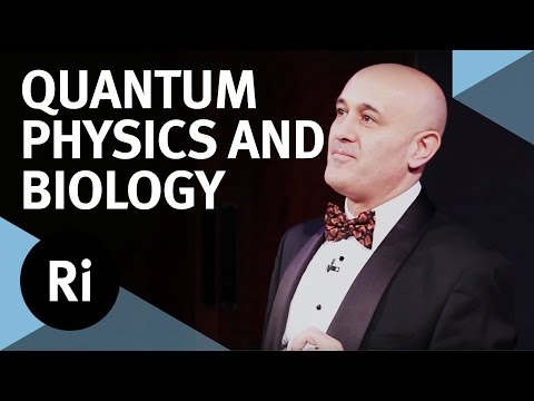 quantum - In this Friday Evening Discourse at the Royal Institution, Professor Jim Al-Khalili explores how the mysteries of quantum theory might be observable at the b...