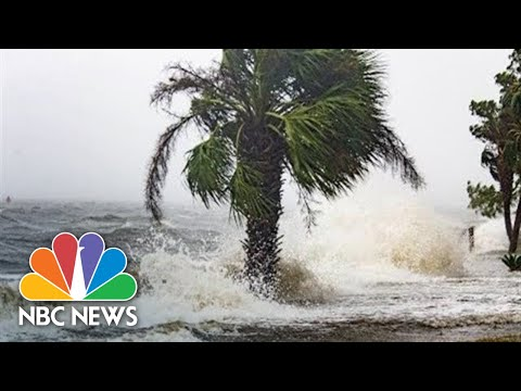 Special Report: Hurricane Michael To Make Landfall In U.S. | NBC News
