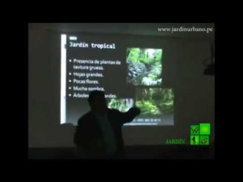 Diseño de Jardin Tropical - Lima, Perú