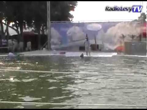 Show de delfines en Manzanillo