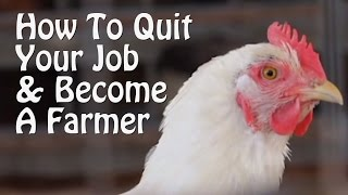 Video Quit Your Job and Farm - PART 1 - 10 Small Farm Ideas, from Organic Farming to Chickens & Goats. MP3, 3GP, MP4, WEBM, AVI, FLV Agustus 2019