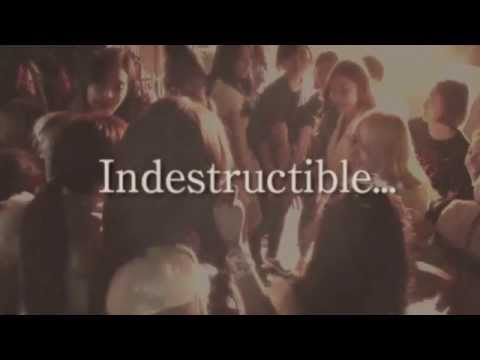 Indestructible (Lyric Video)