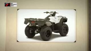 8. 2014 Honda FourTrax Foreman Rubicon Review Oregon