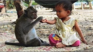 Video Strong Relationship Kid & Monkey/ Lovely friends Animals with humans Youlike Monkey 1302 MP3, 3GP, MP4, WEBM, AVI, FLV Juli 2018