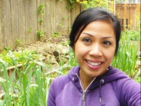 Garden tips - Organic garden update in the Pacific Northwest! Spring vegetable garden tour. Vegetable garden update. May 23,2014 Join us on Face Book! https://www.facebook...