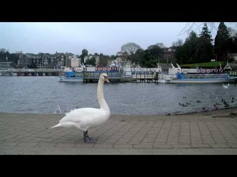 windermere - Bowness-on-Windermere situated in a spectacular lakeside setting on the eastern shore of Lake Windermere, is Cumbria's most popular destination. The town is ...