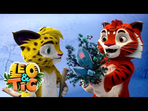LEO and TIG 🦁 NEW 🐯 Episode 26 - Christmas Winners ❤️ Moolt Kids Toons Happy Bear