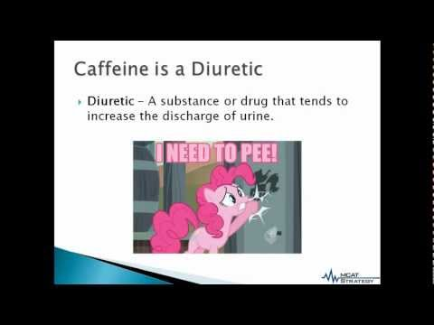 MCAT Strategy - Exam Body Hack: Counteracting the Diuretic Effects of Caffeine