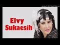 Download Lagu ELVY SUKAESIH - RINDU DAN DUKA (BAGOL_COLLECTION) Mp3 Free