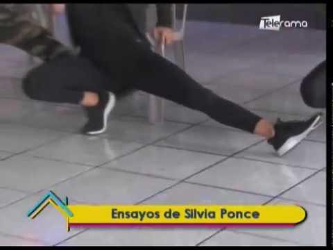 Ensayos de Silvia Ponce