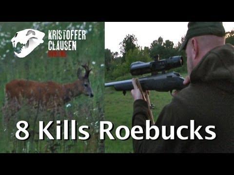 Kristoffer Clausen hunting roebucks 8 kills. Bukkejakt 8 fellinger