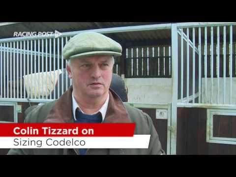 Cheltenham Stable Tour: Colin Tizzard On His Chasers