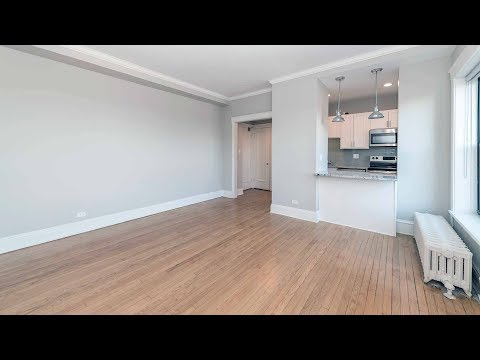A renovated Lincoln Park 1-bedroom in a prime location fronting the park