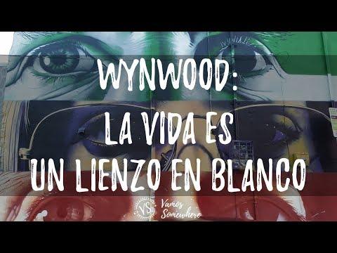 Wynwood, la vida es un lienzo en blanco - Wynwood Art District, a white canvas
