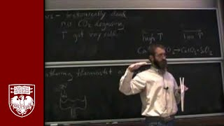 Lecture 15 - The Lungs of the Carbon Cycle