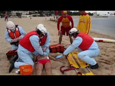 神戸・須磨海水浴場で水難救助訓練やバンドウイルカ公開