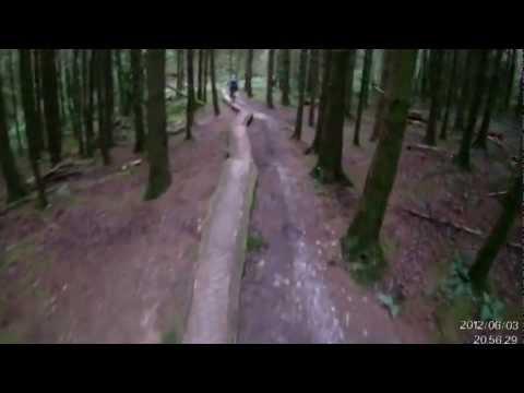 Breckfa Log Ride