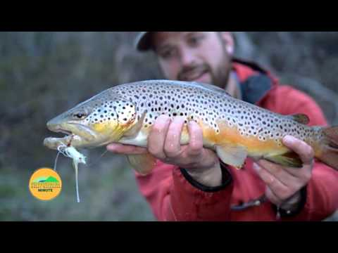 Hunting & Fishing in the Pennsylvania Great Outdoors