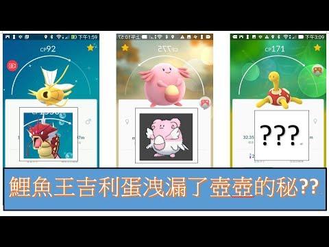 Pokémon GO鯉魚王與吉利蛋洩漏了壺壺的秘密???信不信由你