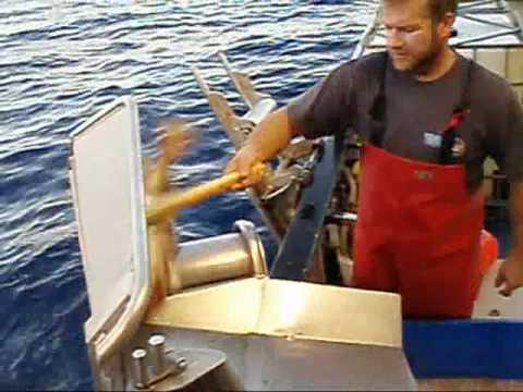 FISHING EASY WAY 15000 HOOKS!