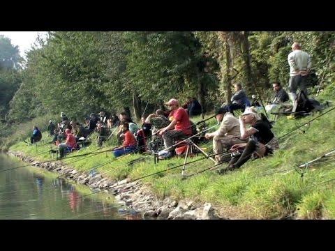 Náhled - Křemačák v obležení rybářů