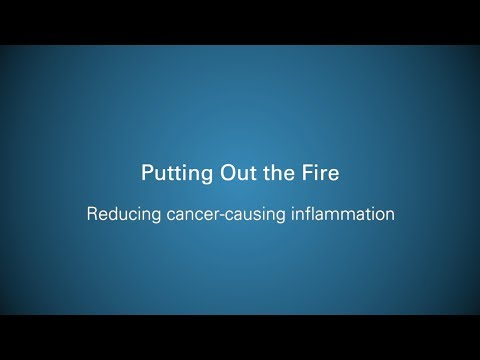 Putting Out the Fire: Reducing Cancer-causing Inflammation