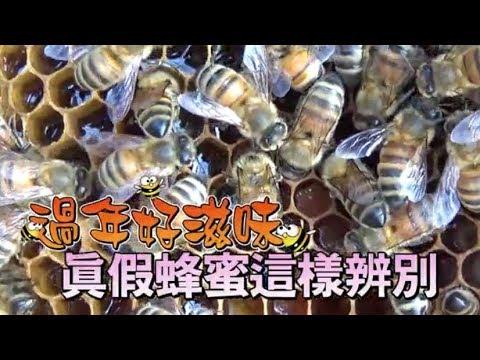 【都市養蜂】騙不了人 四招分辨真蜂蜜 ...