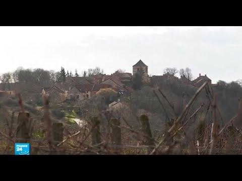 العرب اليوم - شاهد: مزرعة كروم في منطقة