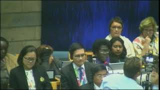 UNEA 3, Opening Plenary (OECPR): Helen Hakena intervention