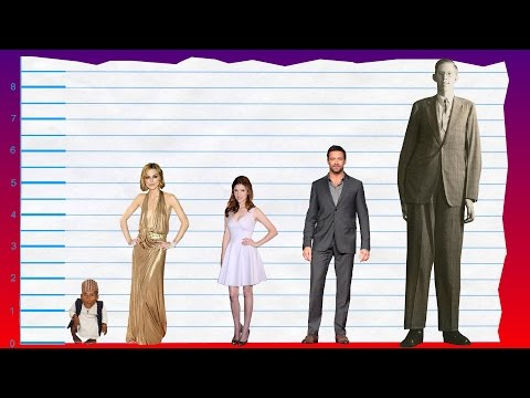 How Tall Is Keira Knightley? - Height Comparison!
