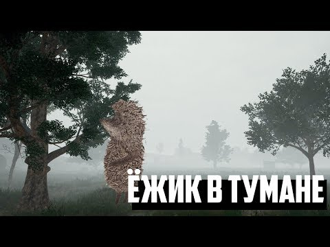 Ёжик в тумане в PLAYERUNKNOWN'S BATTLEGROUNDS