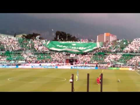 Salida día del hincha verde #9 - Los del Sur - Atlético Nacional