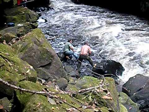 Pescaria Rio Melgaço
