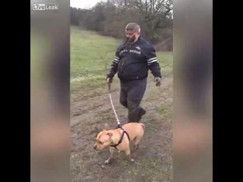 """""""Nawet się do mnie nie odzywaj"""". Powrót ze spaceru z psem"""