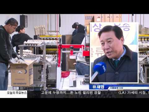미국산 계란 '해상 운송' 시작 1.25.17 KBS America News