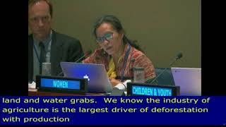 Devi's Review of SDG 12, at the HLPF 2018: UN Web TV