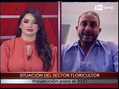 Situación del sector floricultor proyección para el 2021