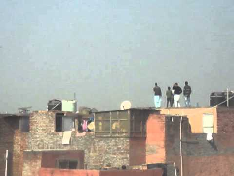 indian pigeon - This race was between Ustad Pummy V/S Khalifa Mohsin. Location:- Old Delhi, India. Time:- 28th January.2013....from 11 a.m to 12:45 p.m. The birds in the vid...