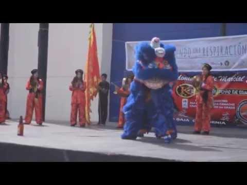 """""""Día Mundial de Tai Chi y Qi Gong"""" Inauguración - Danza de Leones Chinos"""