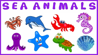 Names Of Sea Animals & Water Animals  Toys For Kids VideoA kid enjoying and having fun with Sea Animal clay toys!