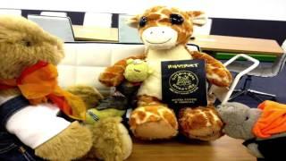 Stuffed Animals on Vacation!