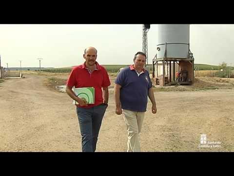 Programa de fomento de la biomasa en explotaciones ganaderas de Castilla y León
