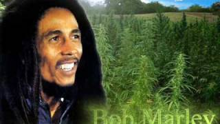 Bob Marley vídeo clipe No Woman No Cry