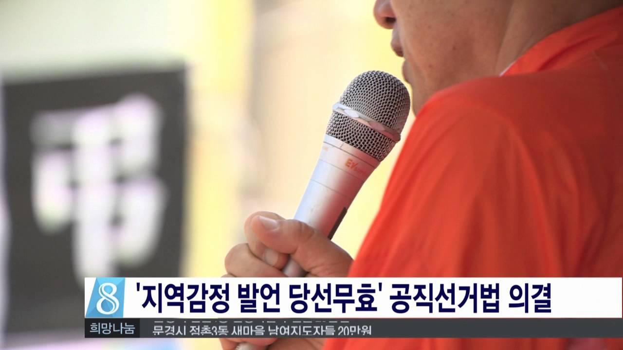 '지역감정 발언 당선무효' 공직선거법 의결