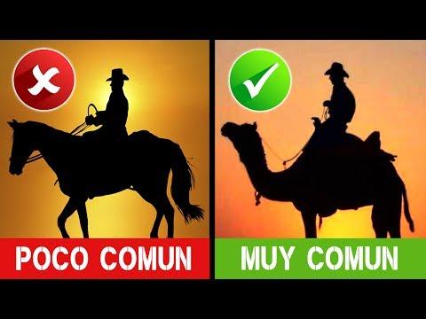 5 MITOS Y LEYENDAS Sobre Los COWBOYS