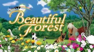 Beautiful Forest LWP YouTube video